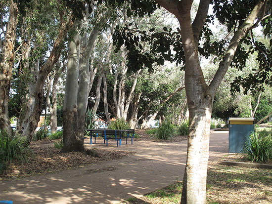 Just one of the many picnic spots spread along the 17km of waterfront in Hervey Bay